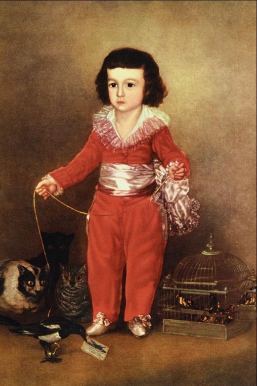 Manuel Osorio Manrique de Zúñiga Painting by Goya