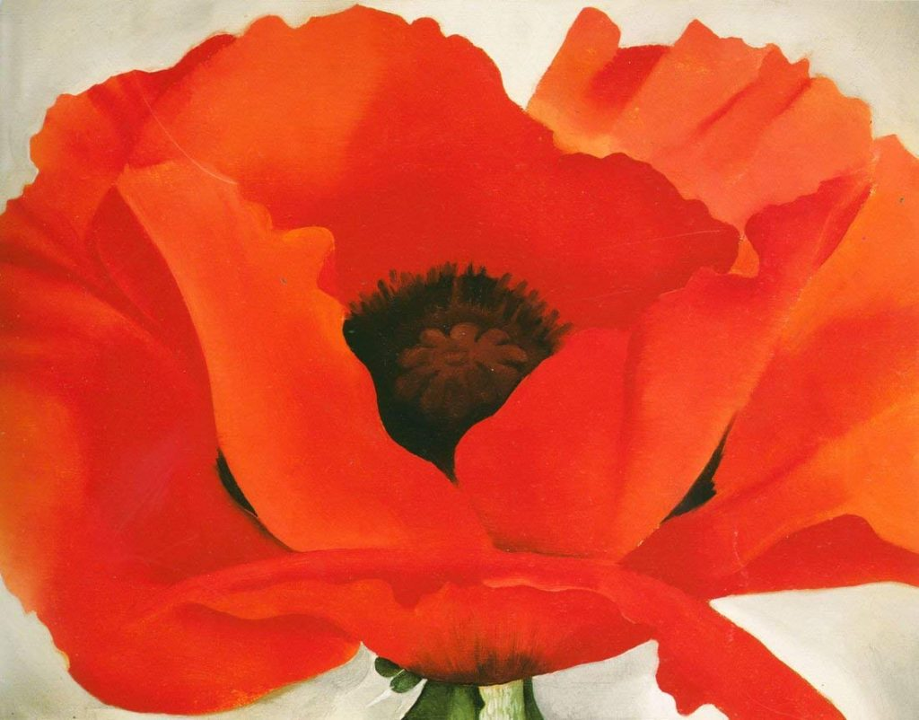 Georgia O Keeffe Red Poppy